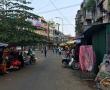 Dauwbraam – stadsnatuur aan de kade