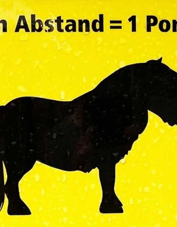Berlijn: 1 pony verwijderd van COVID