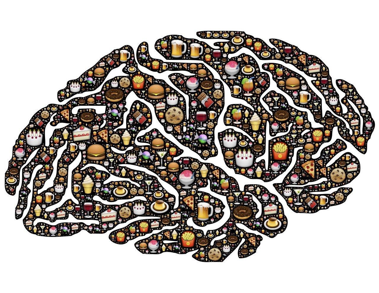 Hersens voedsel DNA